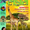 Safari Issue # 290