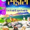 Safari Issue # 292