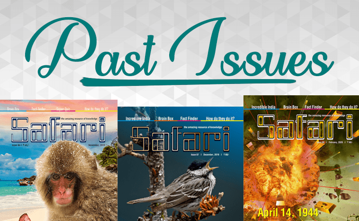 English Past Issues